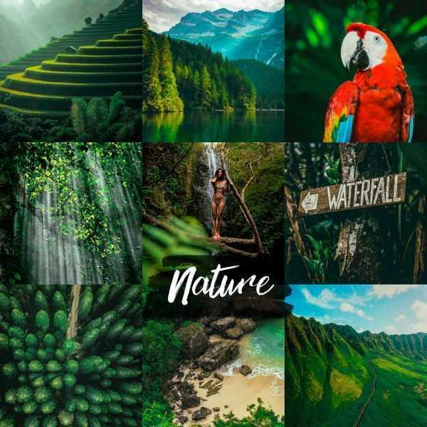 preset nature - przyrodniczy filtr do lightroom